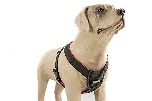 Cinto de Segurança Peitoral Para Cães (G) K9 Spirit