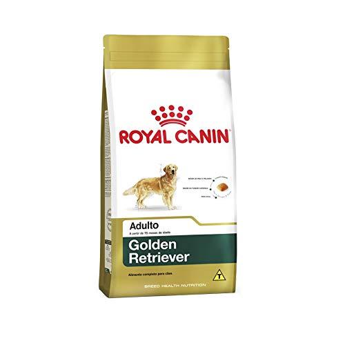 Ração Royal Canin Golden Retriever Cães Adultos 12Kg Royal Canin para Todas Todos os tamanhos de raça Adulto - Sabor Outro