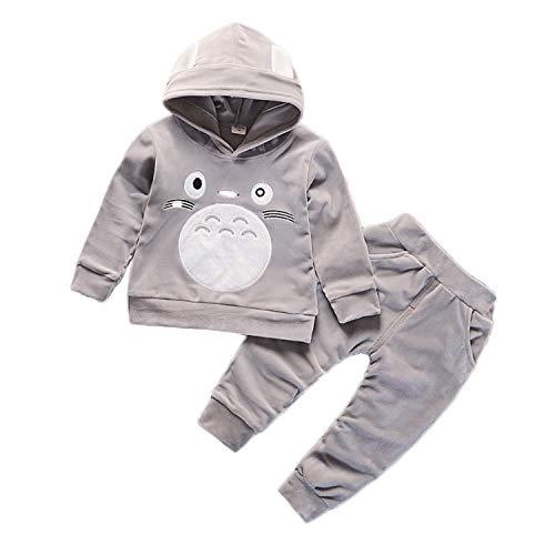 Conjunto de moletom com capuz de veludo com calça para meninos e meninas da Baby Totoro, Cinza, 80cm/6Months-1Y