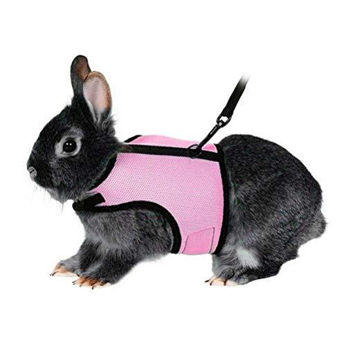 Coleira e arnês ajustáveis de coelho da VILLCASE – Arreio de coelhos macios com coleira, correndo, caminhada e corrida para furões e outros animais de estimação pequenos – Tamanho G (rosa)