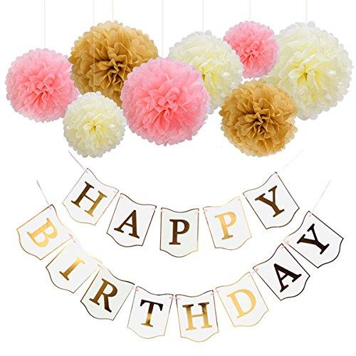BESTOYARD Faixa de Feliz Aniversário e Pom de Papel de Tecido Pom Decoração de Flores para Festa (Quadro Branco)