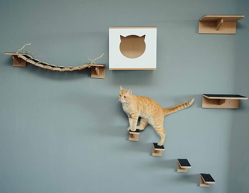parquinhos-para-gatos