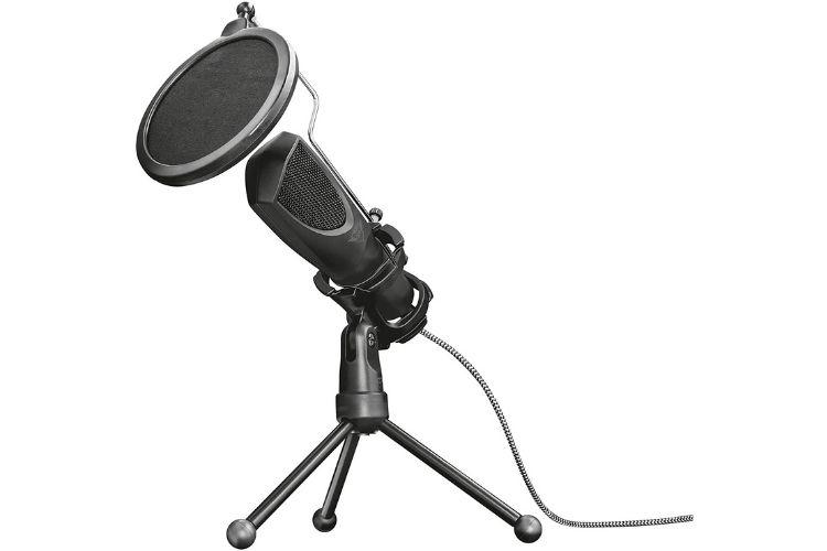 Microfone de mesa com pop filter.