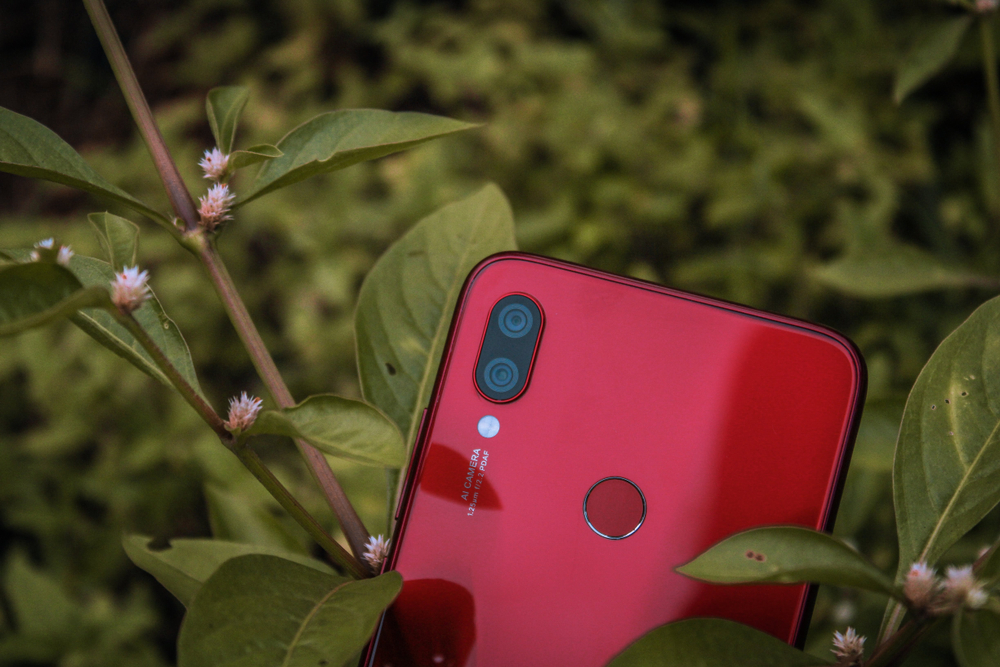 Celular Xiaomi Vermelho No Meio De Plantas.