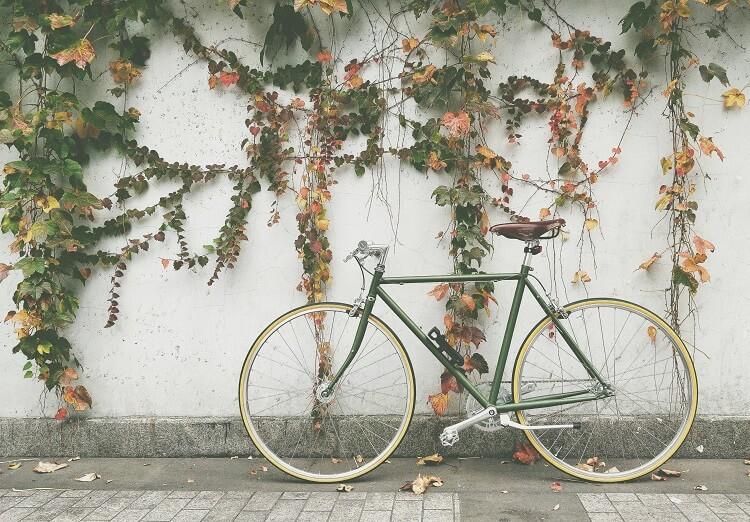 Bicicleta Estilo Vintage Na Cor Verde Encostada Em Uma Parede Com Heras.