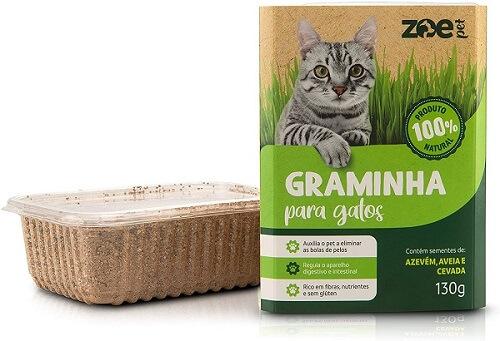 como cuidar de gatos graminha