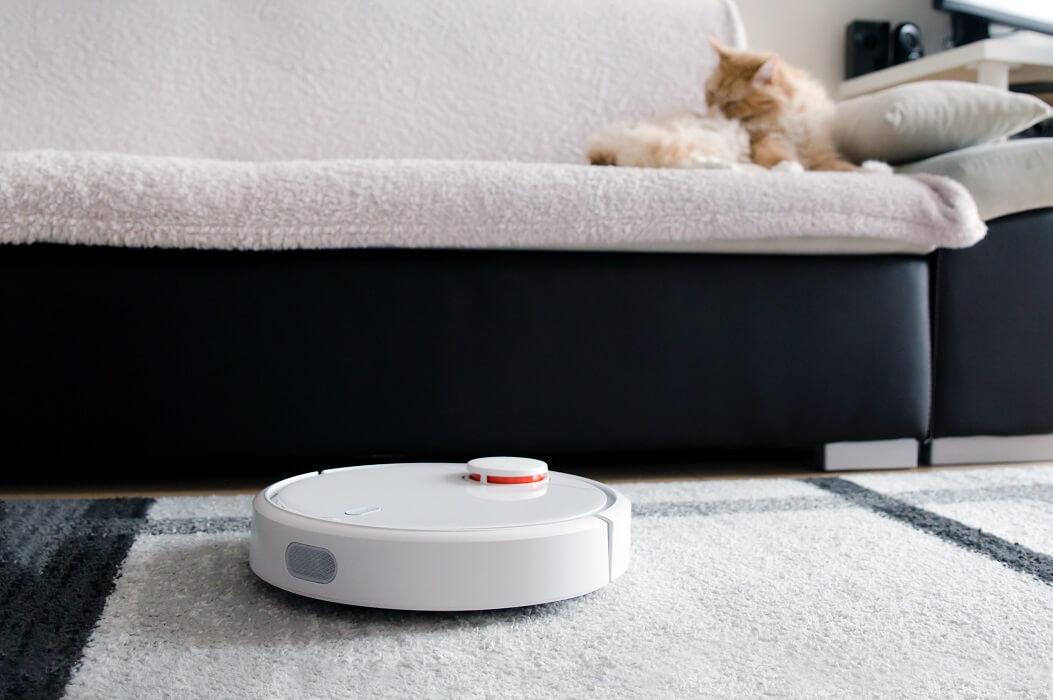 Aspirador Robô Limpando A Casa Enquanto Gato Toma Banho No Sofá