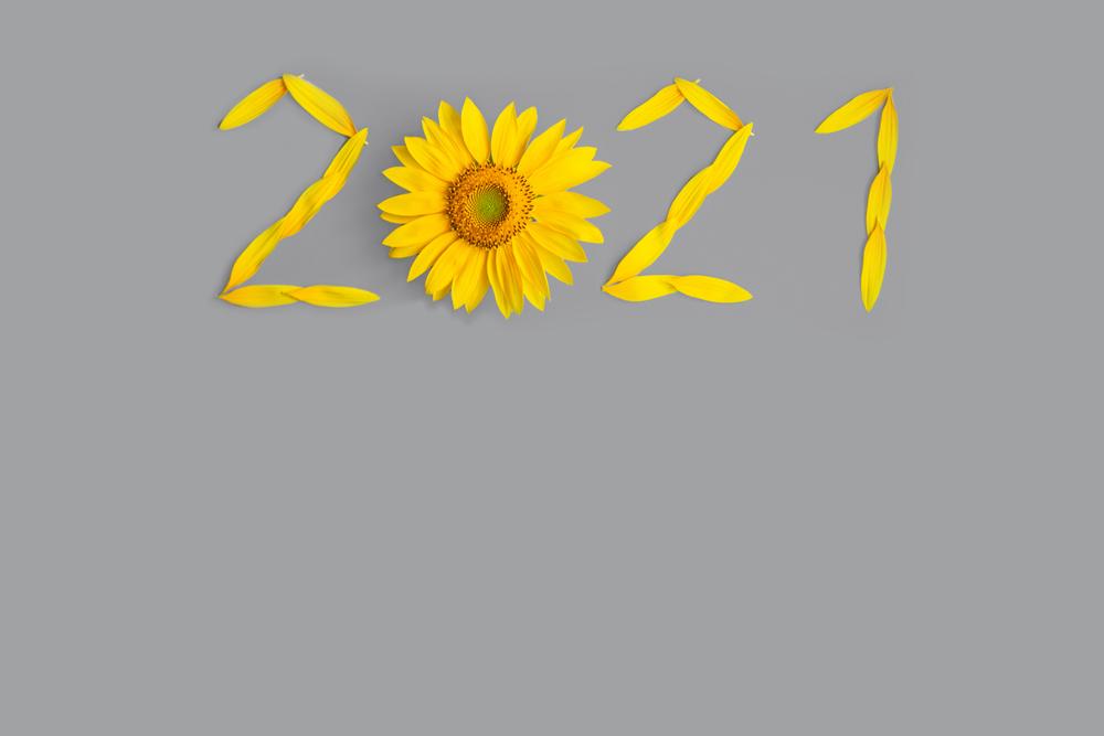 Ano 2021 Formado A Partir De Pétalas De Um Girassol Em Fundo Cinza.