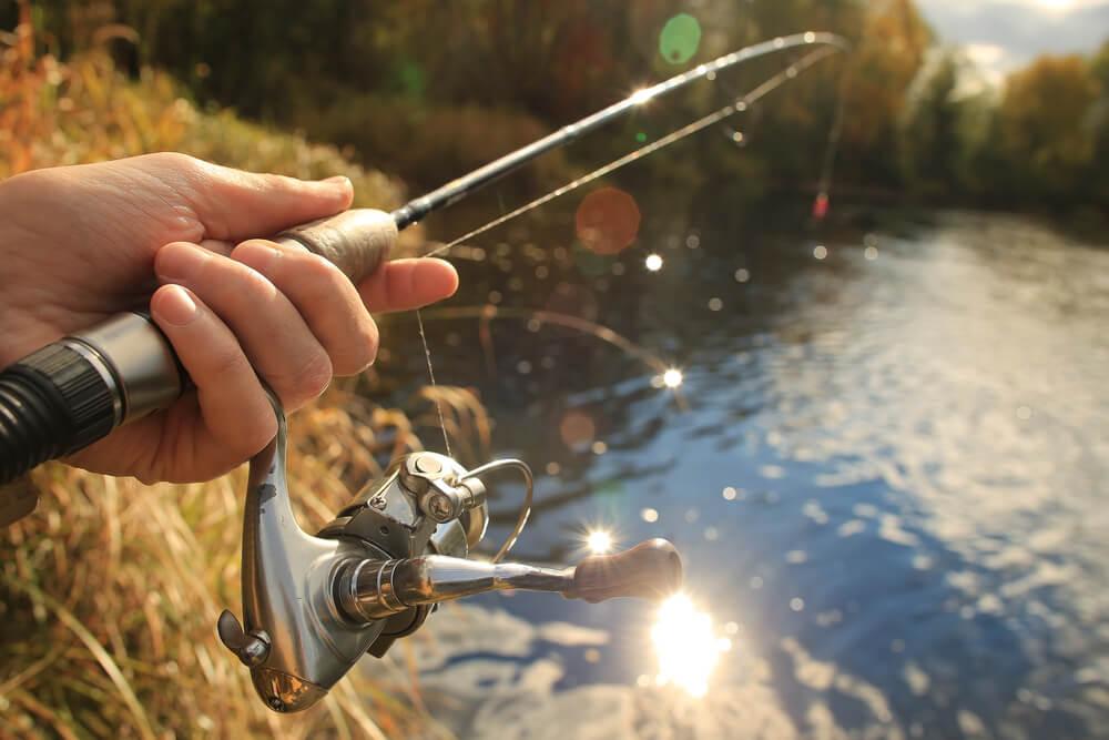melhor linha de pesca multi eclipe ultralight