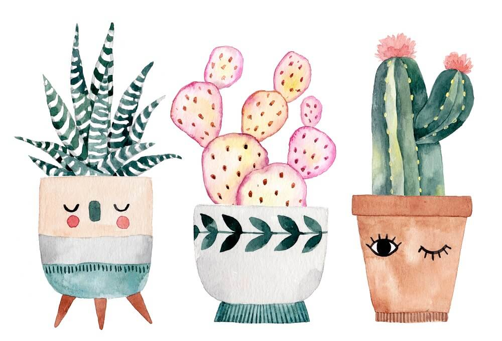 Desenho Em Aquarela Com Três Vasos Decorados E Com Cactos