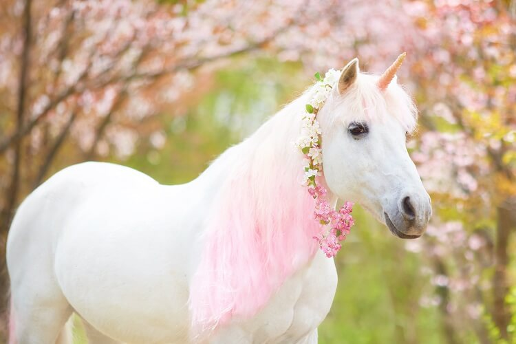 Unicórnio branco e rosa.