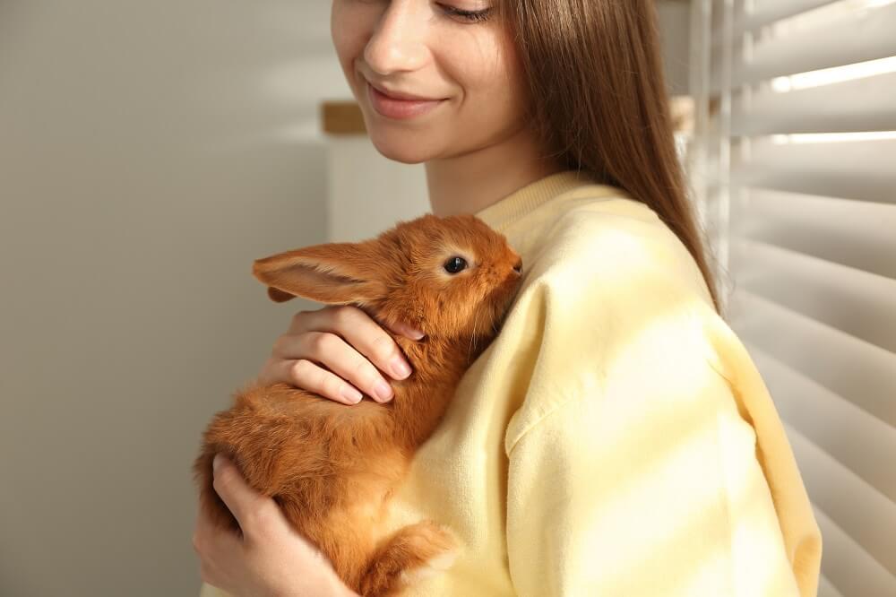 Mulher branca segurando coelho marrom