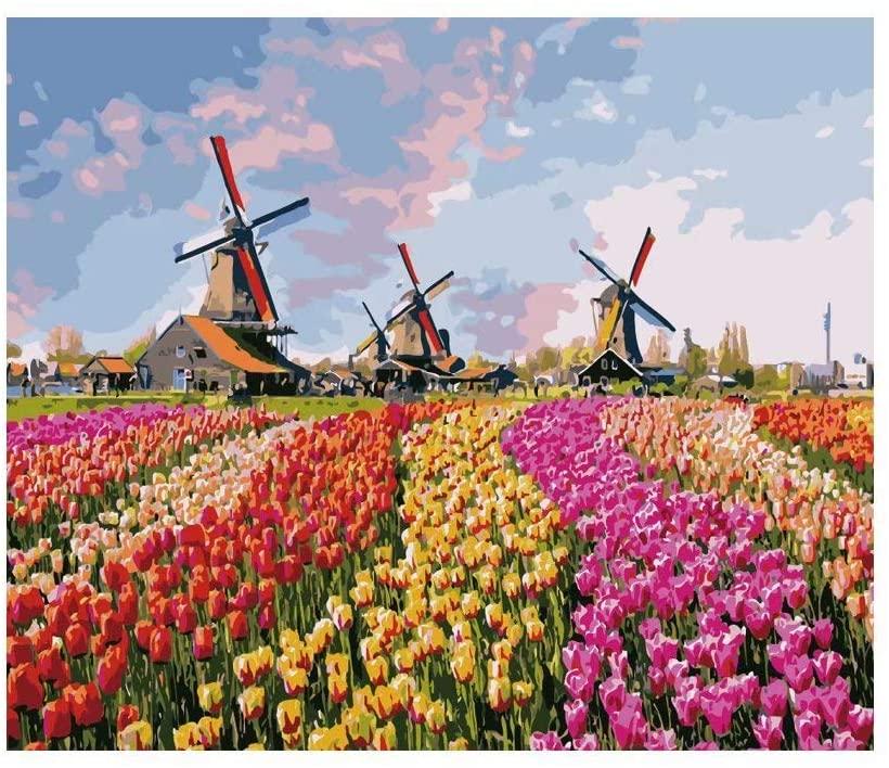 pintura por números: paisagem holandesa