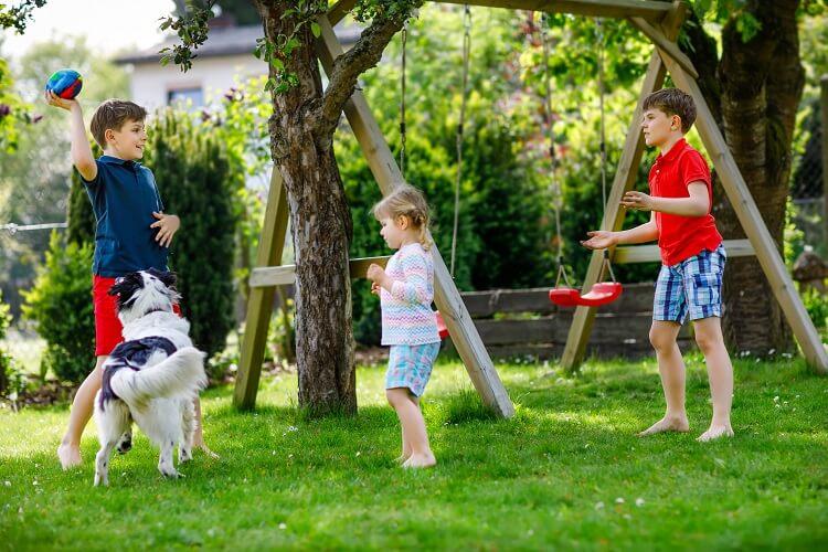Crianças Brincando No Quintal
