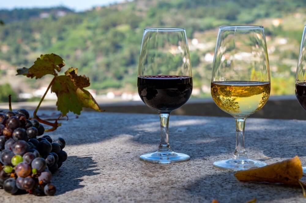 Vinhos Portugueses Em Destaque